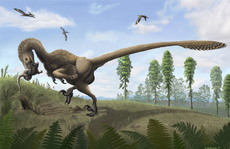 Saurornitholestes  U2013 Emily Willoughby Art