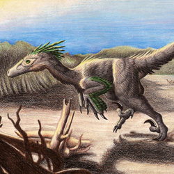Deinonychus on the Beach