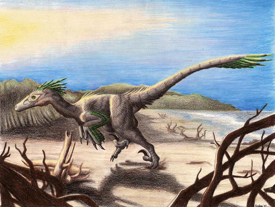 Deinonychus on the Beach