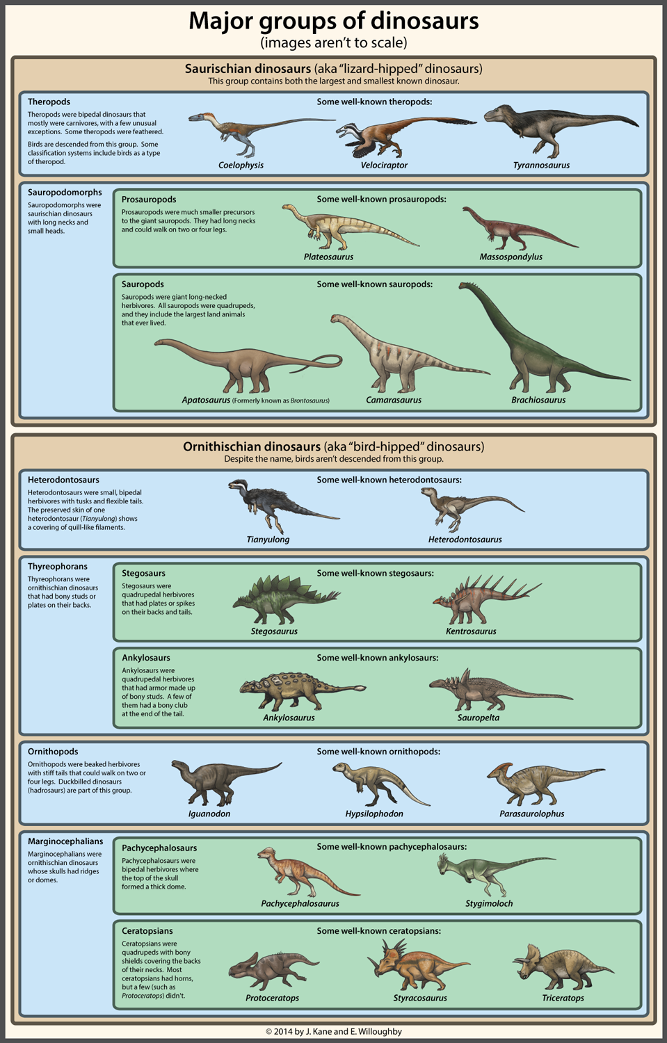 Dinosaur Classification Simplified