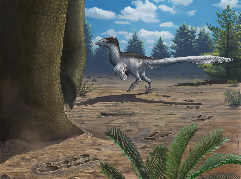 Sign of the Deinonychosaur